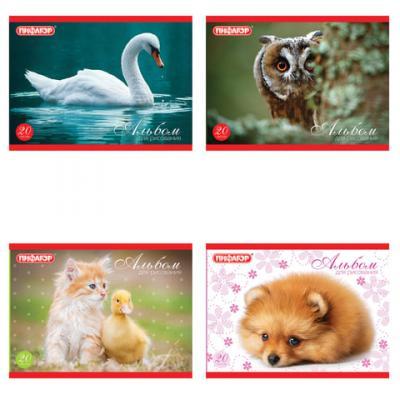 Альбом для рисования ПИФАГОР Животные A5 20 листов