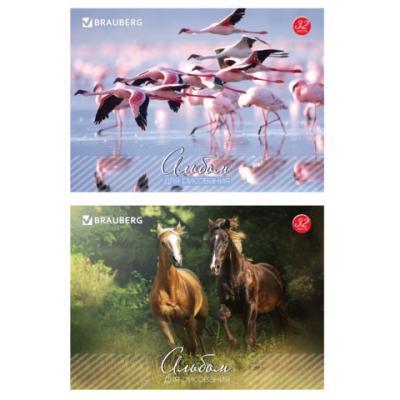 Альбом для рисования BRAUBERG Живая природа A4 32 листа альбом для рисования brauberg живая природа a4 32 листа