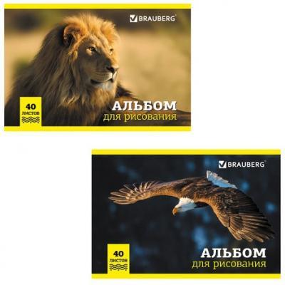 Альбом для рисования BRAUBERG Дикие животные A4 40 листов альбом для рисования action animal planet a4 40 листов ap aa 40 в ассортименте