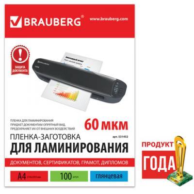 Фото - Пленки-заготовки для ламинирования BRAUBERG, комплект 100 шт., для формата А4, 60 мкм, 531452 вука вука таблетки 60 шт