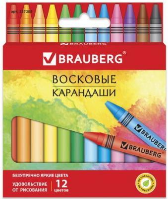 Восковые карандаши BRAUBERG АКАДЕМИЯ, НАБОР 12 цв.,227283