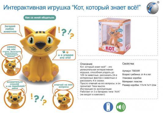 Купить Интерактивная игрушка Кот, который знает все! , на бат., звук. эффект, в/к, best toys, коричневый, пластик, унисекс, Игрушки со звуком