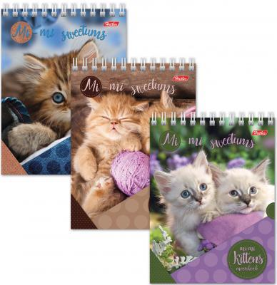 Блокнот Hatber Милые котята A6 40 листов