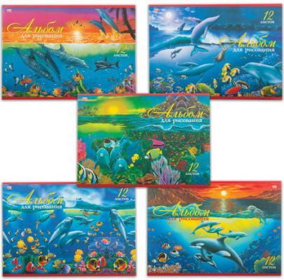 Альбом для рисования, А4, 12 л., обложка офсет, HATBER VK #and#quot;Дельфины#and#quot;, 12А4C, A069936