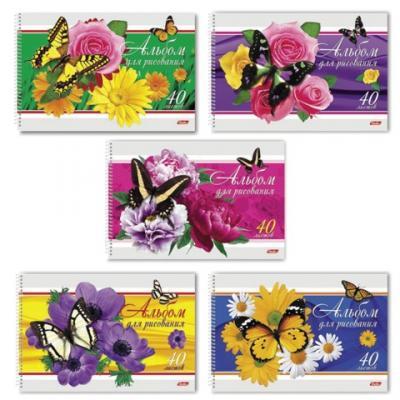 Альбом для рисования Hatber Бабочки с цветами A4 40 листов