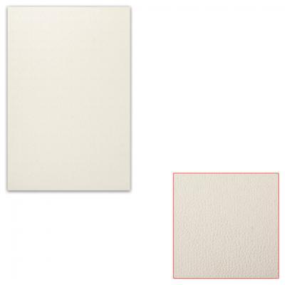 Картон ПОДОЛЬСК-АРТ-ЦЕНТР Белый картон грунтованный 20х30 см