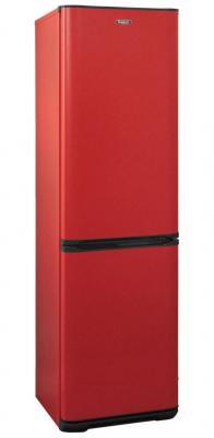 Холодильник Бирюса Б-H149 красный (двухкамерный) холодильник бирюса б m133 серебристый