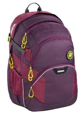 Рюкзак светоотражающие материалы Coocazoo Berryman 30 л фиолетовый бордовый