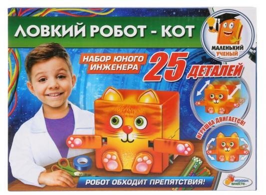 Набор для опытов ИГРАЕМ ВМЕСТЕ Ловкий робот-кот 25 предметов