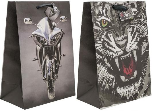 Пакет подарочный крафт, 21*30*12 см, бумага, 2 дизайна пакет подарочный крафт 26 32 13 см бумага