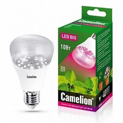 купить Лампа светодиодная рефлекторная Camelion LED10-PL/BIO/E27 E27 10W 13241 по цене 385 рублей