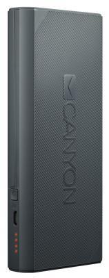 Внешний аккумулятор Power Bank 10000 мАч Canyon CNE-CPBF100DG темно-серый H2CNECPBF100DG