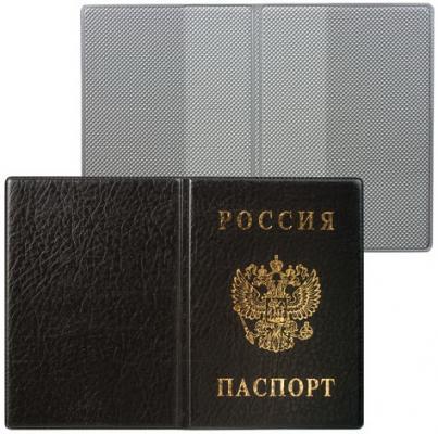 Обложка для паспорта России, вертикальная, ПВХ, цвет черный, ДПС, 2203.В-107