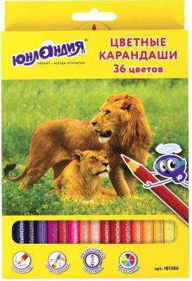Набор цветных карандашей ЮНЛАНДИЯ Мир животных 36 шт 176 мм 181386