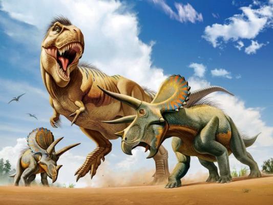 Стерео пазл Prime 3d Тираннозавр против трицератопса 500 элементов