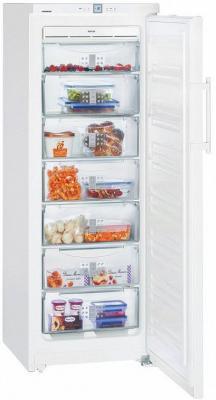 LIEBHERR GNP 2756-24 001 Морозильник цена и фото