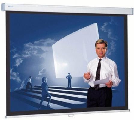 Фото - [10200315] Экран Projecta Proscreen CSR 154x240 см (112) Datalux настенный рулонный 16:10 экран встраиваемый projecta descenderpro 141х220см 141 x 220