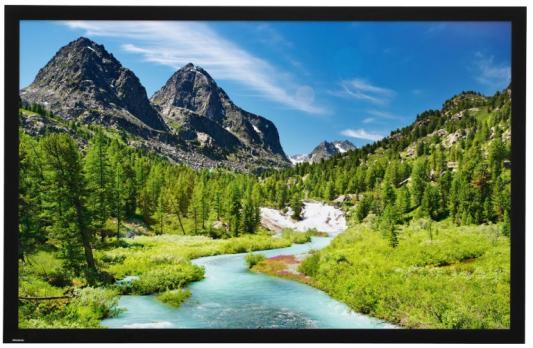 """[10690614] Экран Projecta HomeScreen Deluxe 140x236см (98"""") HD Progressive 1.1 Micro Perforated 16:9 deluxe проекционный экран deluxe dls m203x"""