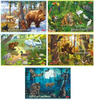 Альбом для рисования, А4, 20 листов, скоба, обложка картон, HATBER, 205х290 мм,