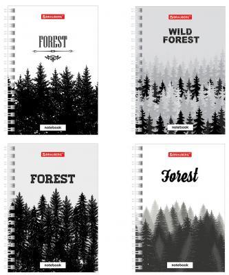 """Записная книжка, А6, 80 л., гребень, твердая обложка, клетка, BRAUBERG, """"Таинственный лес"""", 150х105 мм, 129847"""