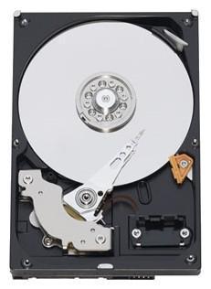 3.5'' Жесткий диск 1Tb Western Digital Caviar Blue (WD10EZEX) SATA III <7200rpm, 64Mb>