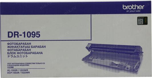 Фото - Драм-картридж EasyPrint DB-1095 для Brother HL-1202R/1223WR/DCP-1602R/1623WR (10000 стр.) DR-1095 фотобарабан brother dr1095 для hl 1202r dcp 1602r монохромный