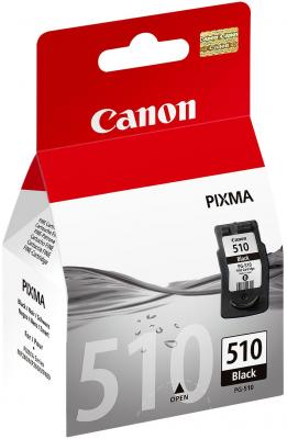 Картридж Canon PG-510  чёрный для Pixma MP260 canon pg 510 multipack 2970b010