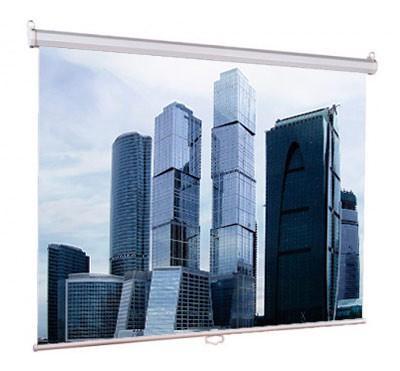 Настенный экран Lumien Eco Picture 180х180 см Matte White, восьмигранный корпус, возм. потолочн-настенного крепления (Треугольная уп) [LEP-100102]