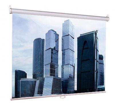 Настенный экран Lumien Eco Picture 200х200 см Matte White, восьмигранный корпус, возм. потолочн-настенного крепления (Треугольная уп)