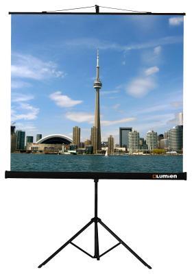 цена Экран на штативе Lumien Eco View 150x150 см Matte White с возможностью настенного крепления [LEV-100101] онлайн в 2017 году