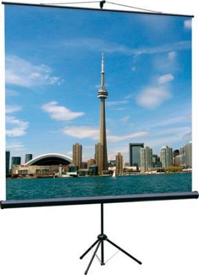 лучшая цена Экран на штативе Lumien Eco View 200x200 см Matte White с возможностью настенного крепления [LEV-100103]