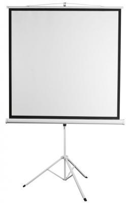 цена на Экран на штативе Digis DSKC-1103 Kontur-C формат 1:1 (200*200) MW