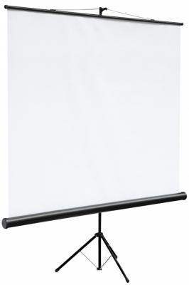 цена на Экран на штативе Digis DSKC-1101 Kontur-C формат 1:1 (160*160) MW