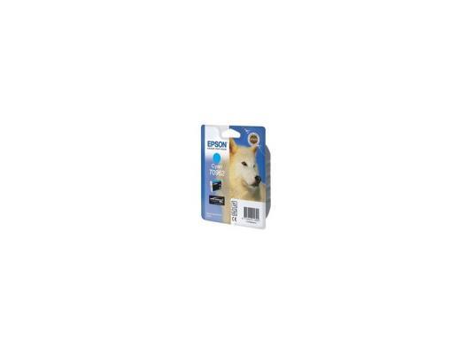 Купить Картридж Epson C13T09624010 T0962 для Epson Stylus Photo R2880 голубой