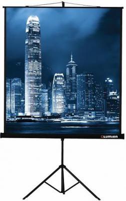 Экран на штативе Lumien Master View 213х213см Matte White FiberGlass LMV-100104 цена и фото