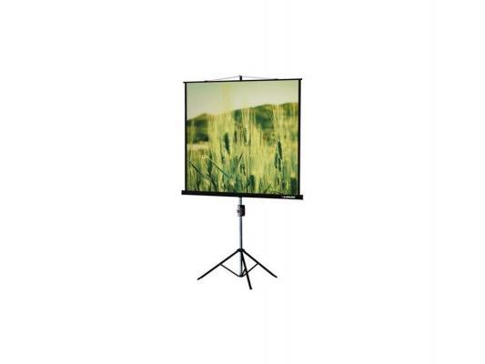 Экран на штативе Lumien Master View 165х220см Matte White FiberGlass LMV-100113 [lmc 100110] экран с электроприводом lumien master control 229x305 см 146 matte white fiberglass черн кайма по периметру