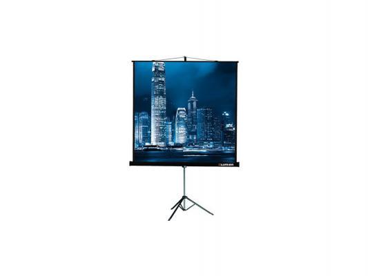 Экран переносной на штативе Lumien LMV-100106 171x128 экран переносной на штативе elite screens yard master oms120h2 dual 149 x 266 см