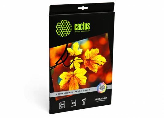 Бумага Cactus CS-SGA426020 А4 260г/м2 полуглянцевая 20 листов