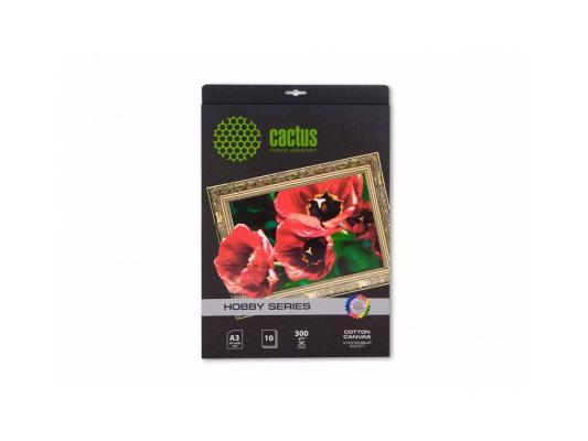 Холст Cactus CS-СA326010 А3 300 г/м2 10л хлопковая