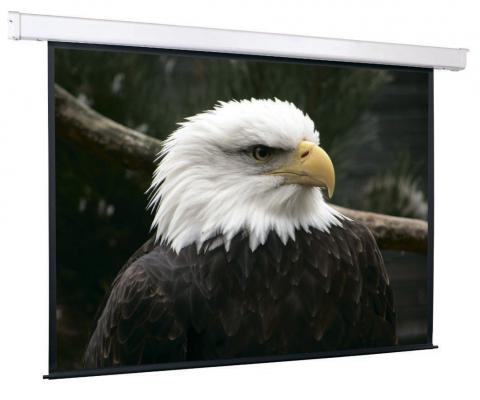 Экран настенный моторизированный ScreenMedia Champion SCM-4305 274 x 206 см экран настенный моторизированный screenmedia 183х244см scm 4304