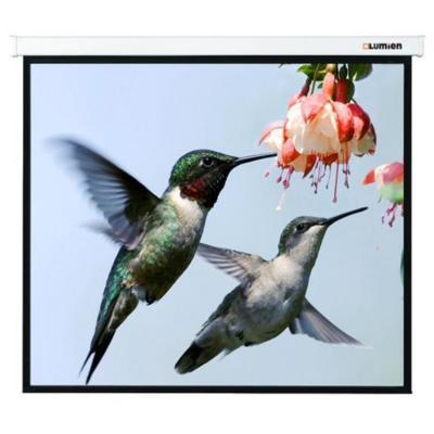 Фото - Экран настенно-потолочный Lumien LMC-100123 400 x 259 см экран настенно потолочный brauberg wall 180 x 180 см 236726