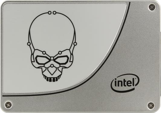 "SSD Твердотельный накопитель 2.5"" 480Gb Intel 730 Series Read 550Mb/s Write 470Mb/s SATA III SSDSC2BP480G410"