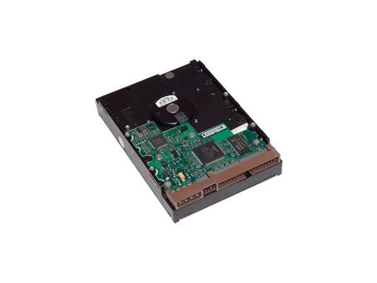 цена на Жесткий диск 3.5 1Tb 7200rpm HP SATAIII LQ037AA