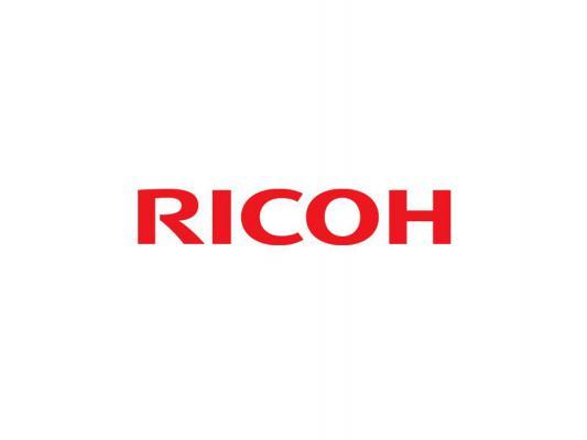 Девелопер Ricoh D1863061 для Aficio MP C3003/C3503/C4503/C5503/C6003 copier color toner powder for ricoh aficio mpc2030 mpc2010 mpc2050 mpc2550 mpc2051 mpc2550 mpc2551 mp c2530 c2050 c2550 printer