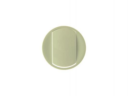 Лицевая панель Legrand Celiane для выключателя с индикацией слоновая кость 66210