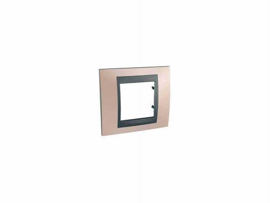 Рамка 1 пост оникс/графит Schneider Electric MGU66.002.296