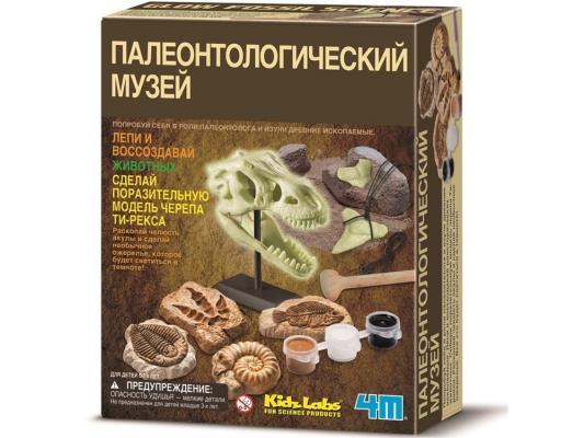 Игровой набор 4M Палеонтологический музей от 8 лет 00-03356