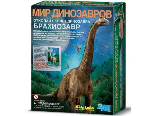 Игровой набор 4M Скелет Брахиозавра от 8 лет скелет брахиозавра 4m