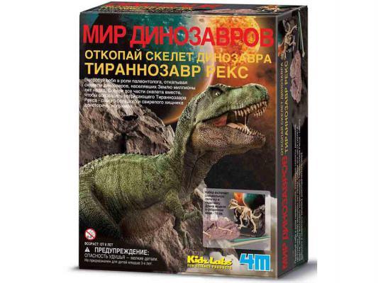 Игровой набор 4M Скелет Тираннозавра от 8 лет 00-03221 4m юный врач скелет человека 00 03375