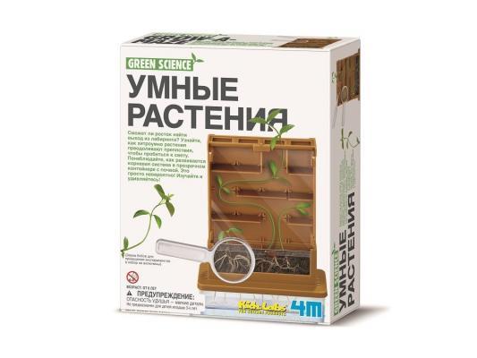 Игровой набор 4M Умные растения от 5 лет 00-3352 набор для творчества 4m фигурки из формочки динозавры от 5 лет 00 03514